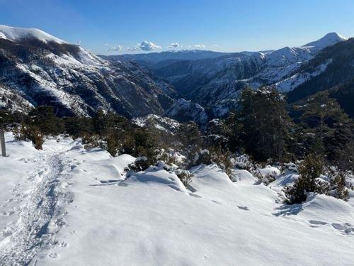 Snowshoeing Provence-Alpes-Côte d'Azur