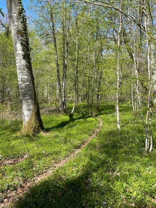Hiking Haute-Marne