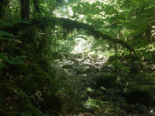 Hiking Doubs